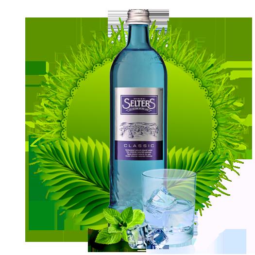 Минеральная вода Селтерс Классическая 0.8 (Selters Classic) стекло