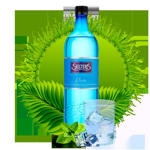 Минеральная вода Селтерс Классическая 1.0 (Selters Classic) пэт